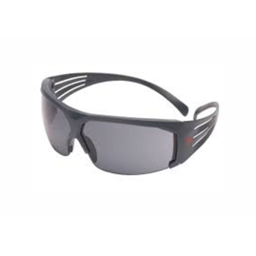 Secure Fit 600 Gafas Anti-empañamiento, ocular gris